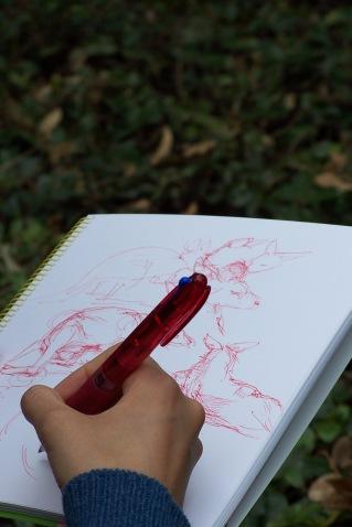 Sketching at Ueno Zoo