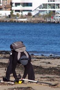 Digging for treasure, Studland Beach, England