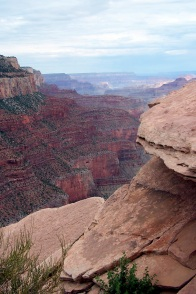 Minerals are responsible for the many shades of brown i the strata of the Grand Canyon