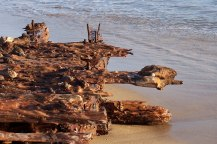 Honeyed timbers of an ancient shipwreck, Outer Banks, North Carolina