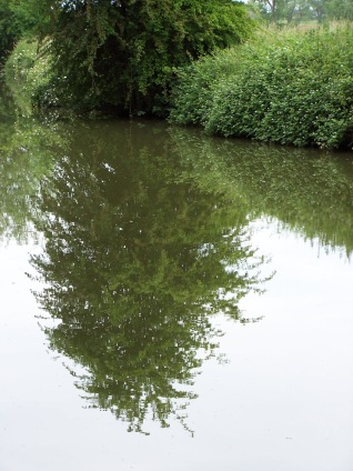The canal is so quiet you can practically count individual leaves in the reflection on the water.