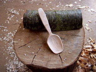 My own wood-carving project--from log to spoon in one day!