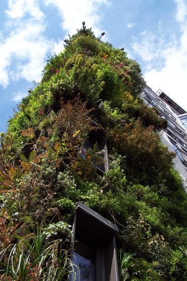 Vertical garden, Living Wall at the Atheneum Hotel, London, England